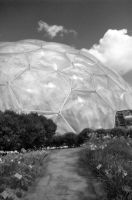 Eden Project Dome BnW by drr104