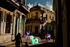 Ponies in Havana by Darkkon13