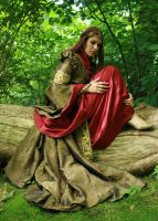 Lady Guinevere 16 by MarjoleinART-Stock