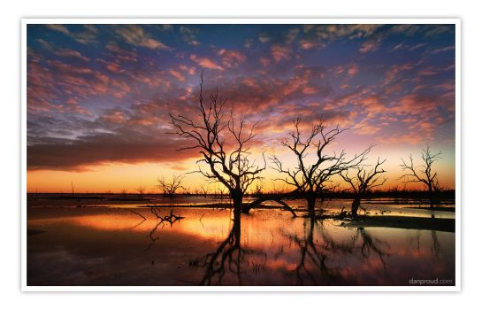 menindee lakes by dannyp5000