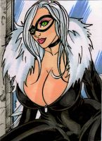 Busty BlackCat 2 by RudeToons