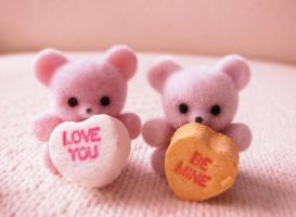 A beary special valentine i by hellohappycrafts