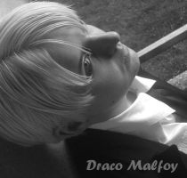 DRACO MALFOY - Cosplay - Portrait by Shinkan-Seto