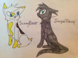 TWG: SunnyBear and JuniperPansy Hypos by CupcakeArt98