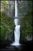 Multnomah Falls by metro