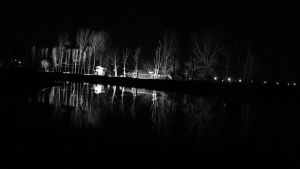 Night Reflecion by Doix