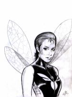 Wasp by swyattart