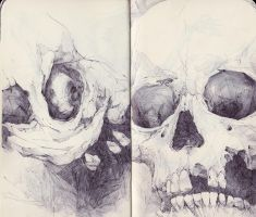 Half Face with Skull by SketchbookNoir