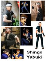 Shingo Yabuki Cosplay Collage by IronCobraAM