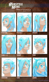 Hairstyle Meme by Dewdrops-of-Crystal