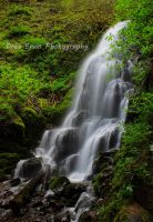 Fairy Falls 2 by DreaErvin
