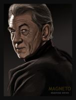 Magneto by turkill
