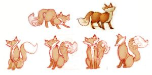 Fox Sketches by AmandaMullins
