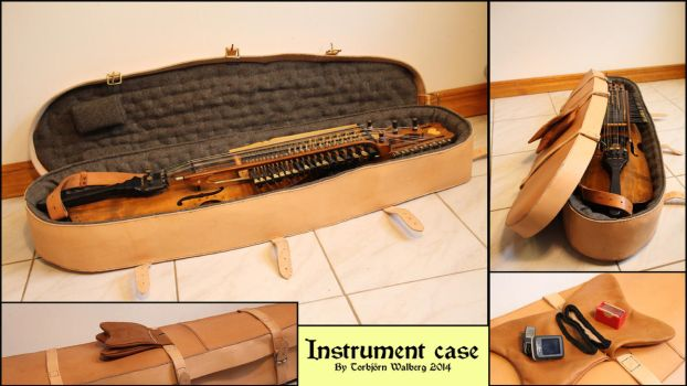 Instrument case by Noctiped