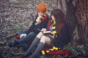 Ron and Hermione ~ Harry Potter by Yamato-Leaphere