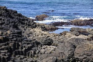 Detail view of the Giant Causeway by UdoChristmann