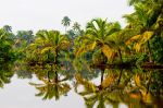 God's Own Country - Kerala by jith3d