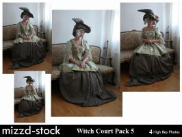 Witch Court Pack 5 by mizzd-stock