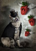 SherlOcat Strawberrymunsters by MADmoiselleMeli