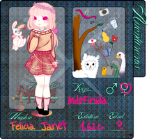 Ficha aventurera: Felicia Janet Renovacion V2 by The-cat1
