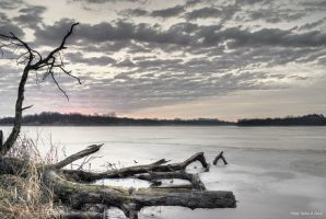 Maffitt Reservoir with dead tree by abstractcamera