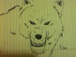 kiba from wolfs rain by XanderCakes