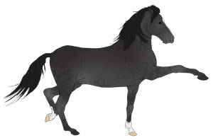 Andalusian Auction Horse 15 by HoofHaven