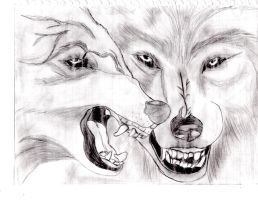 agression wolves by Tigersoul1995