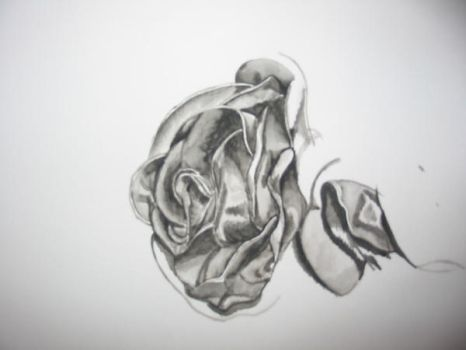 My attempt at a rose by emilemilily