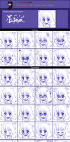 Character Expressions Meme by StarryStellary