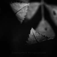 Forever Stuck in this Dreary Autumn by ElyneNoir
