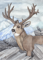 Deer King by MorRokko