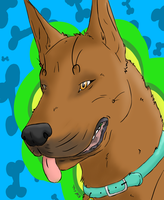Scooby Doo by NAMEY-D0G