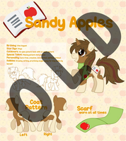 Reference Sheet - Sandy Apples OLD by Sandy--Apples