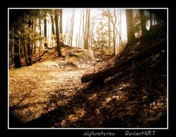 The Path Before Us . . . by slipknotcrow