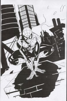 Black Spiderman by ComicInks