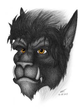Portrait of the Beast by 9YellowDragon9