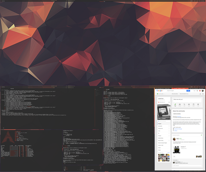 [arch] [bspwm] october 2015 by f-s0ciety