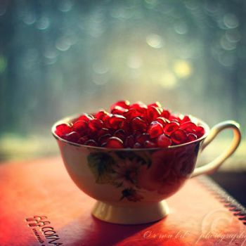 pomegranate cup by Orwald