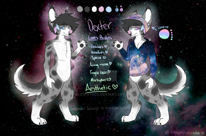 Dexter Reference Sheet by AGrumpyAussie