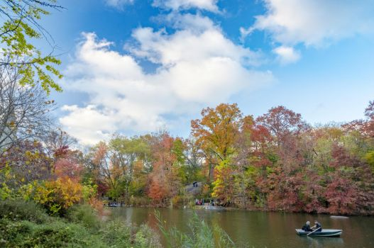 The Lake and Boat, Central Park by mnjul