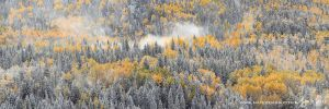 Autumn Winds by Nate-Zeman