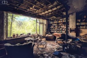 Library by Dapicture