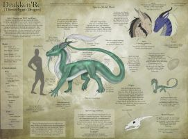 Spirit Dragon - Species Sheet by Ulario