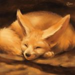 Napping Fennec - SpeedPaint by GoldenDruid