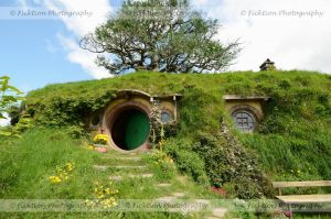 Baggins by FicktionPhotography