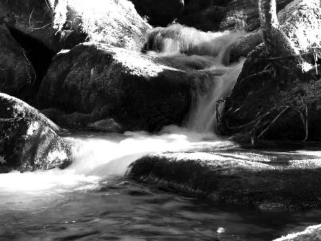 black and white river flow by tommyzoom16