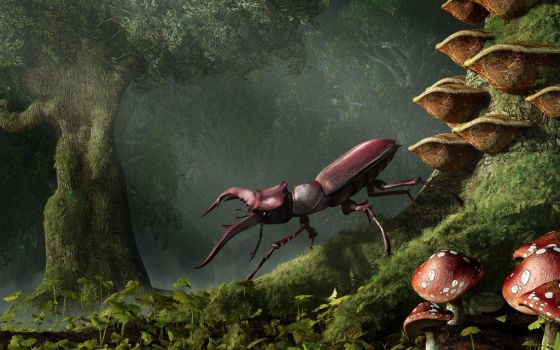 stag_beetle_by_deskridge-d632p7u.jpg