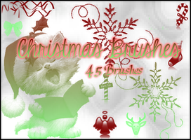 Christmas Brushes by Illyera
