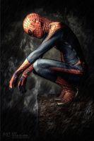 Spider Man by mcolon93
